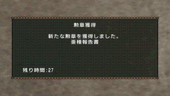 04_亜種報告書.jpg